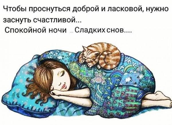 Картинки прикольные смешные для друзей со спокойной ночи, белка анимация для