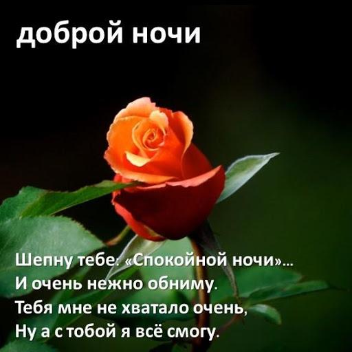 Роза, открытки спокойной ночи леночка любимая